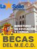 Información sobre becas y ayudas del M.E.C.D. para alumnos de niveles postobligatorios no universitarios (Bachillerato)
