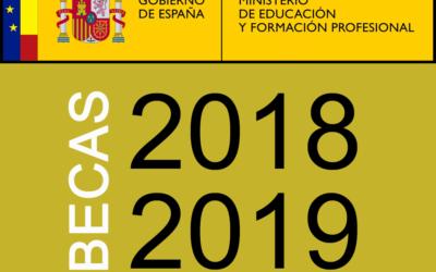 Información sobre Becas y Ayudas del «Ministerio de Educación y Formación profesional» para alumnado con necesidad específica de apoyo educativo